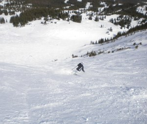skiing whale's tail