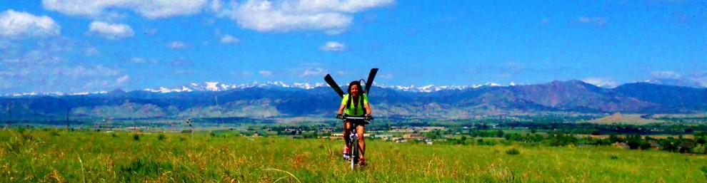 wild rider banner