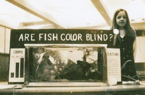 are fish color blind