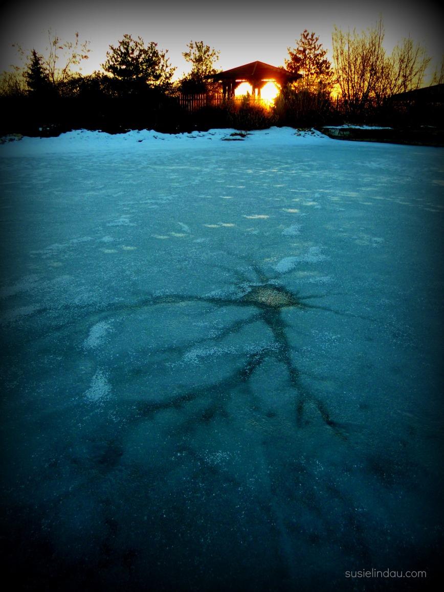 January thaw 1