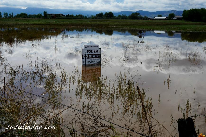 Boulder Flood 63rd 3