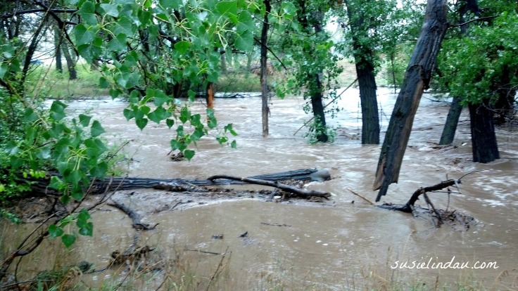 Boulder Flood - Left Hand Creek 2