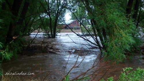 Boulder Flood Left Hand Creek 5