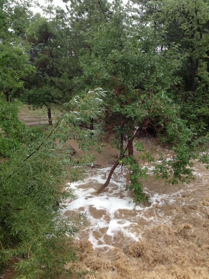 Courtney Lindau - Boulder Creek (2)