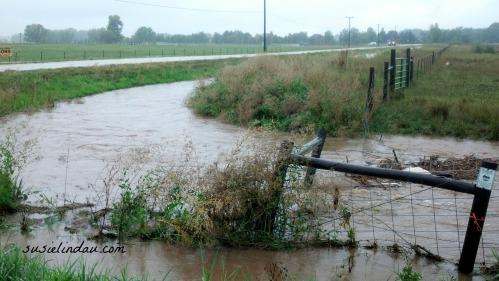 Erie Flood