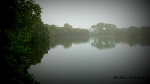 foggy day 1