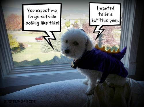 Halloween misfortune
