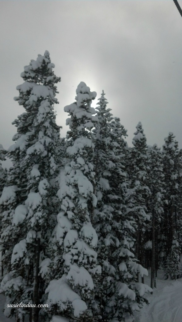 Breck 2- 14
