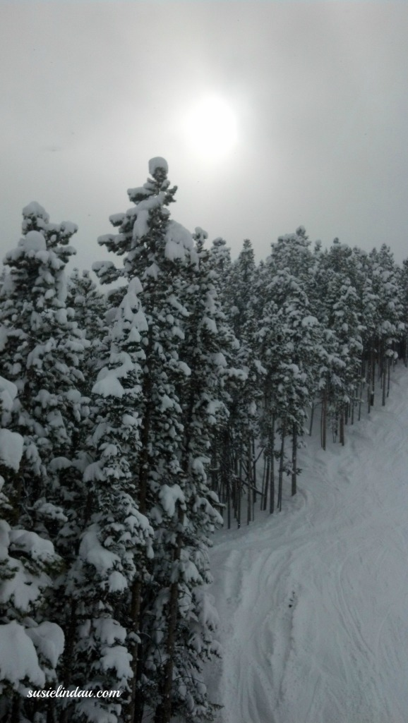 Breck 5 14