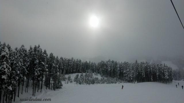 Breck 6 14