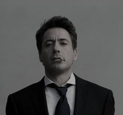 Robert Downey Jr will be perfect for my screenplay