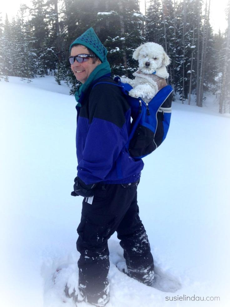 snowshoeing 3