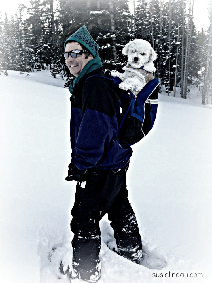 snowshoeing with Roxy