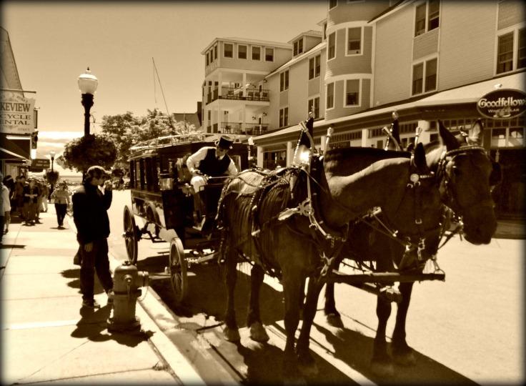 horses on Mackinaw Island