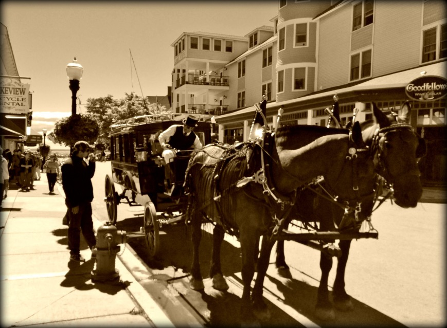 horses on Mackinaw Island