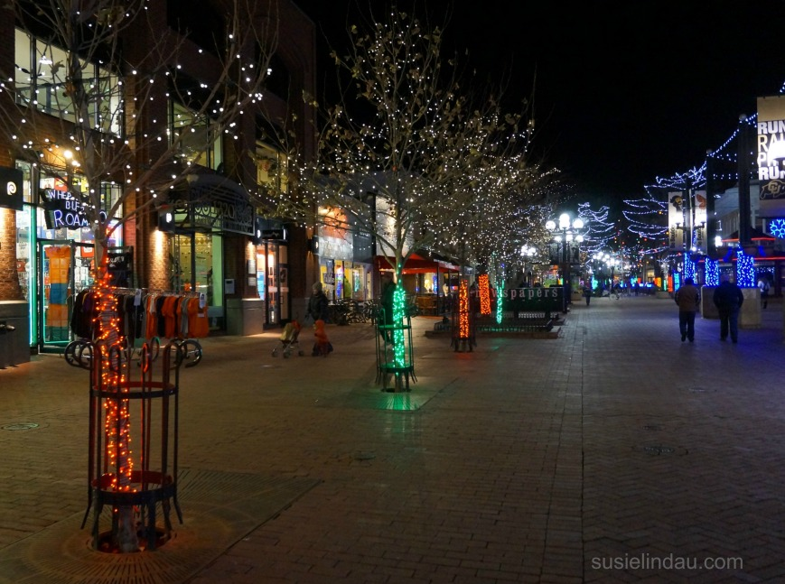 Pearl Street Christmas lights