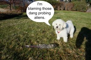 blaming aliens
