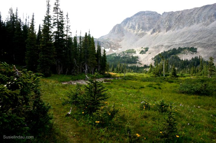 Indian Peaks Wilderness