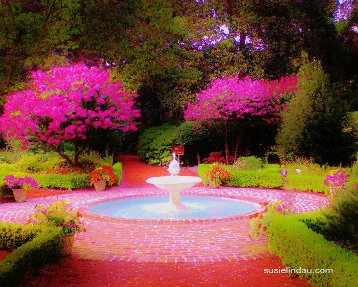 Fiery garden for writing inspiration