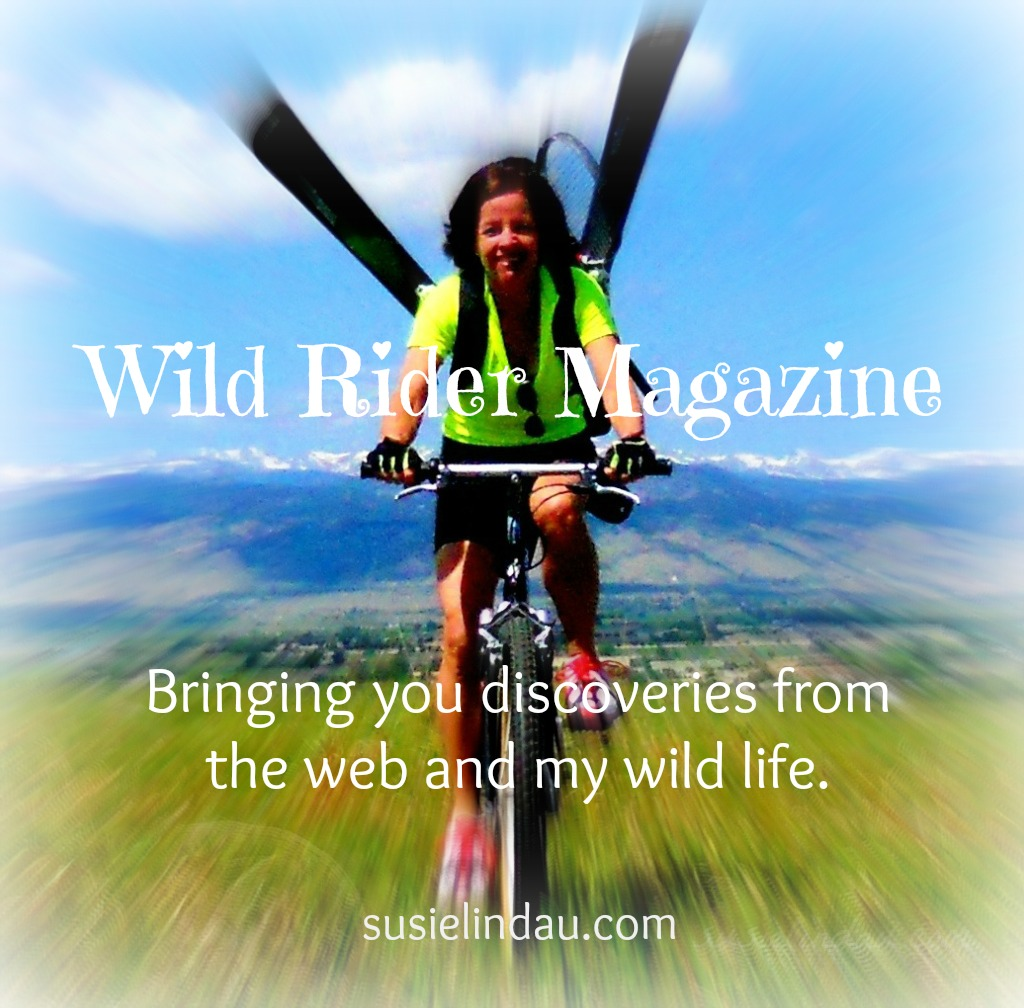 Wild Rider Magazine Discoveries from the web and my wild life