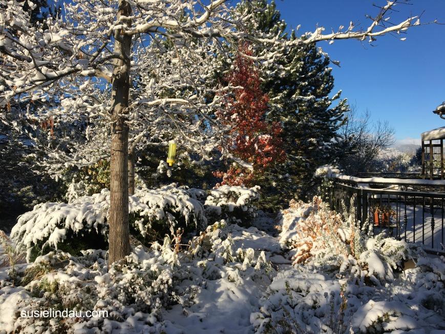 november-snow-2016