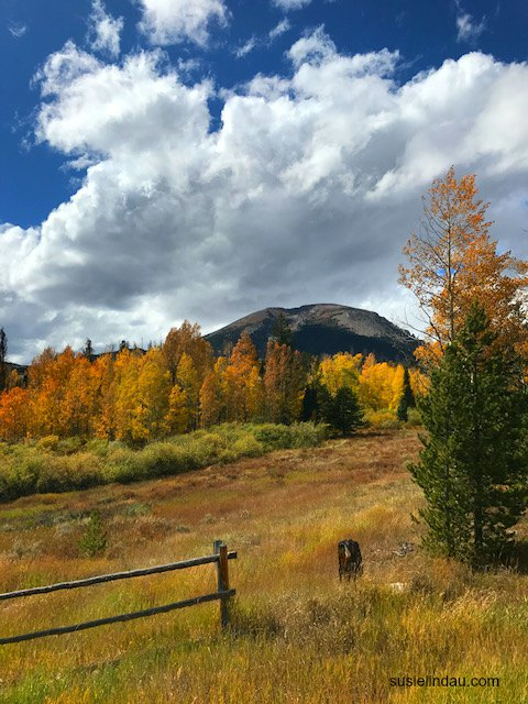 Clouds build over the colorful aspen trees