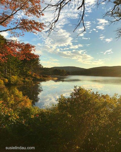 Fall in Acadia