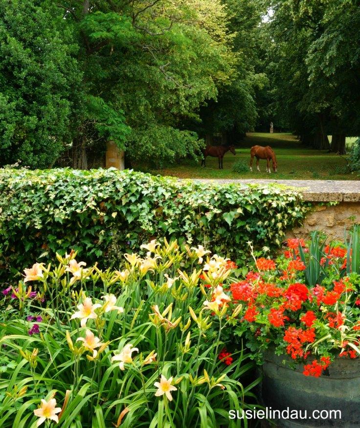 Hidcote Gardens pasture and horse