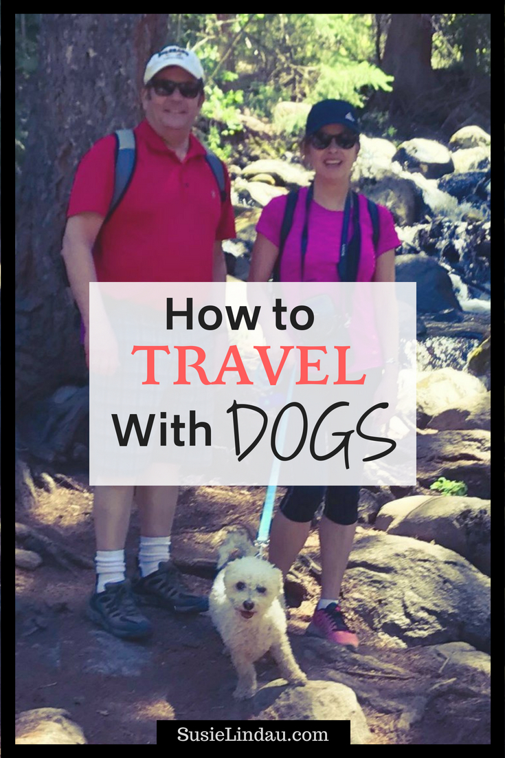 How to Travel with Dogs! Worried about bringing your dog along on vacation? Tips to make it a vacation everyone will enjoy! Dogs, Pets, Travel tips and advice, Travel North America, Aspen, Colorado, traveling with dogs, hiking, dog-friendly hotels #traveltips #travel #pets #dogs #Aspen #Colorado #hikes #hotels