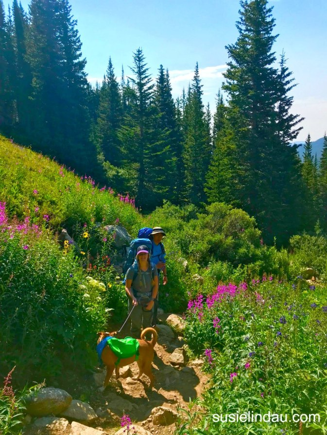 On Fourth of July trail to Arapaho Pass