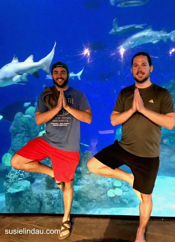 Yoga dudes with sharks