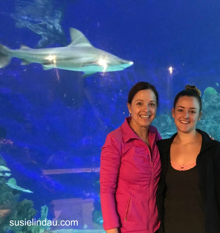 Yoga with sharks 1