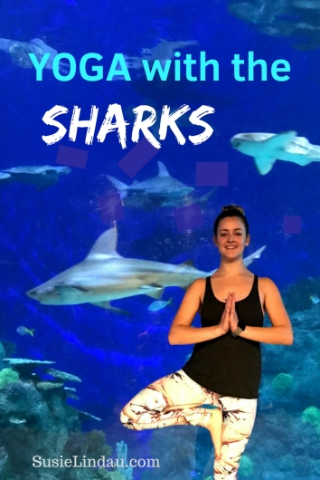 Yoga with the SHARKS! The Denver Aquarium where zen meets underwater adventure. Click to learn how to add this experience to your life! #Sharks #Denver #Yoga Yoga lifestyle, photography, videos