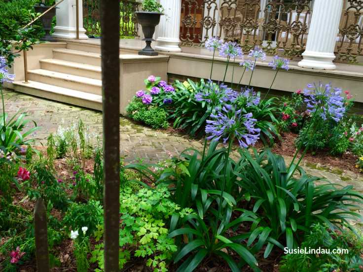 The Garden District - One of many things to do while in The French Quarter, New Orleans. Click for fun ideas!