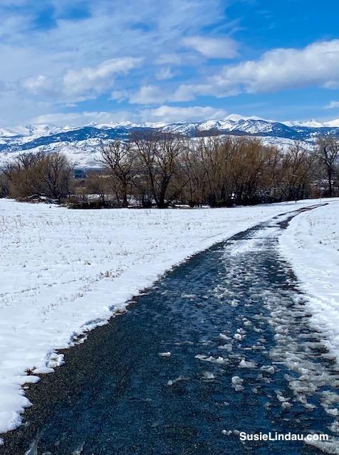 Take a winter walk