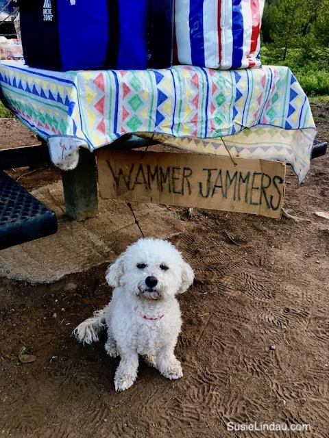 Wammer Jammer camping dog