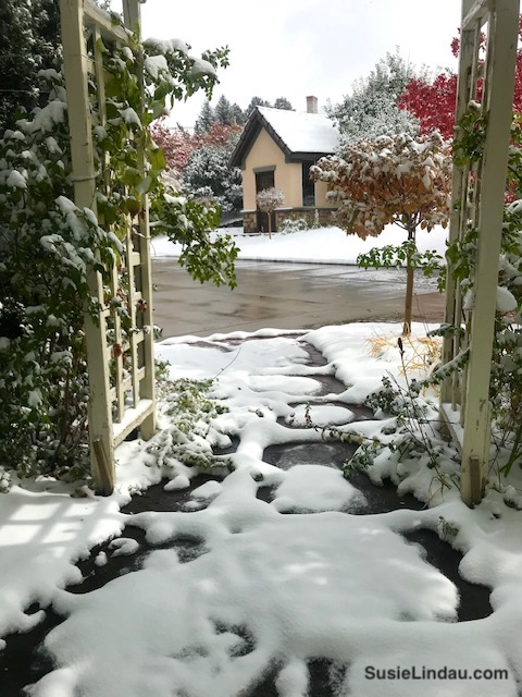 A view through a trellis at a potting shed in the snow