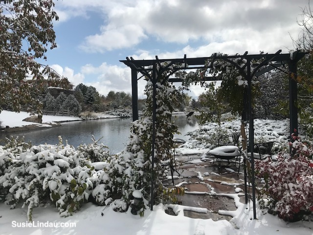 A view of a snowy pond and trellis
