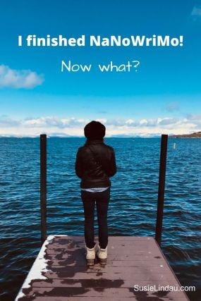 I finished NaNoWriMo - Now What? On a pier looking out and wondering what I'll do with this manuscript?