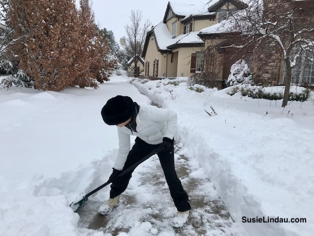 Shoveling heavy snow in Niwot, Colorado