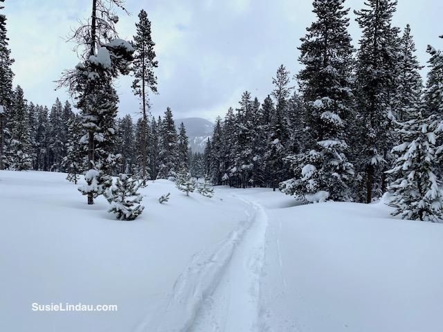 Snowy Colorado Francies Cabin trail