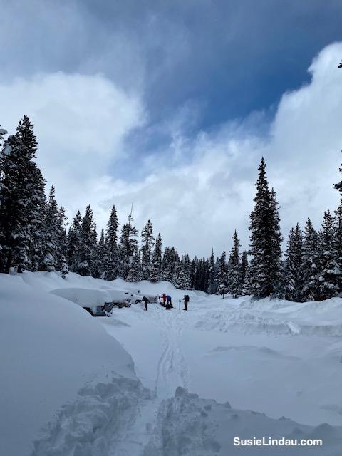 Snowy Parking lot Francie's Cabin
