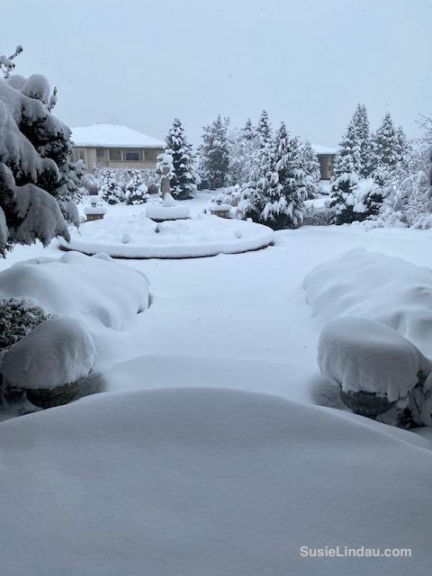 A snowy entry