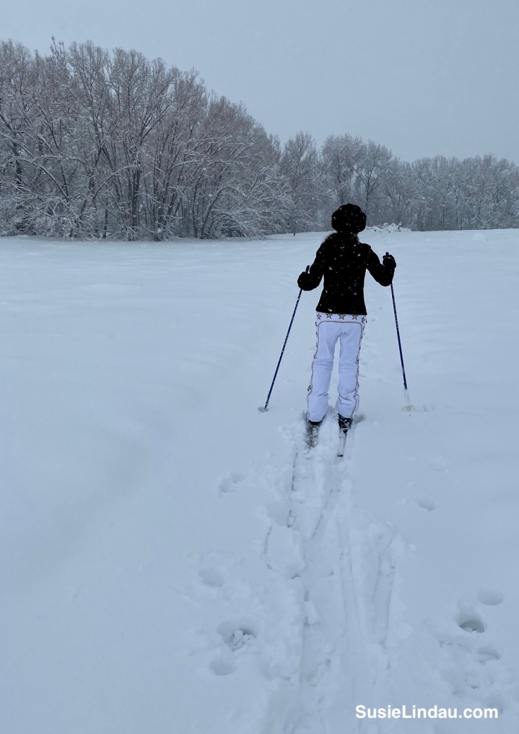 Cross country skiing in Niwot