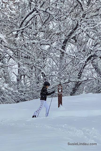Skiing Niwot Trail