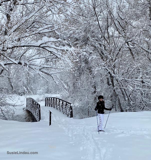 Snowy bridge in Niwot