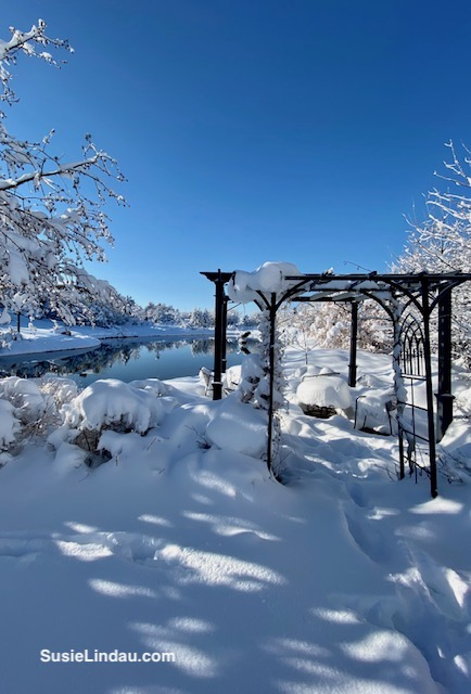 Trellis in front of the snowy pond
