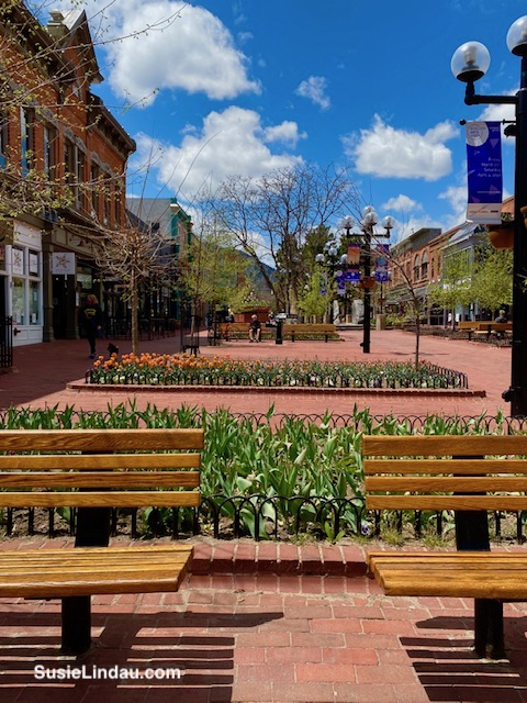 A quiet place pearl street boulder empty benches and street
