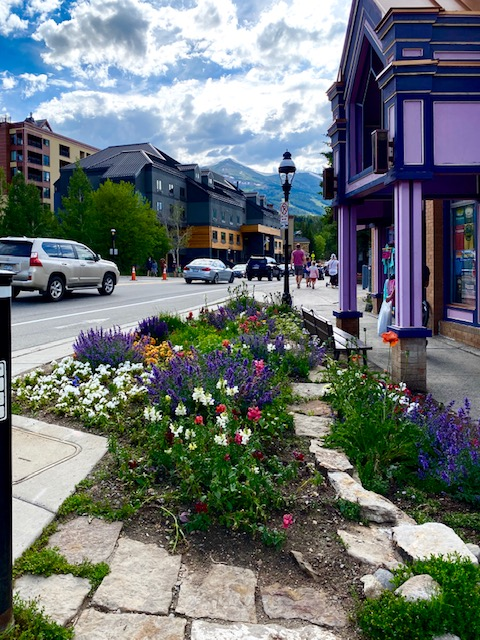 Breckenridge flowers in front of a purple building. The mountains peek from above the town