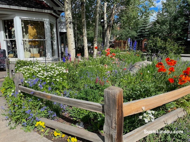 Flowers outside Valley Girl in Breckenridge, Colorado